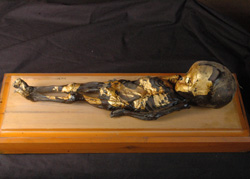 A small mummified boy, adorned with gold leaf