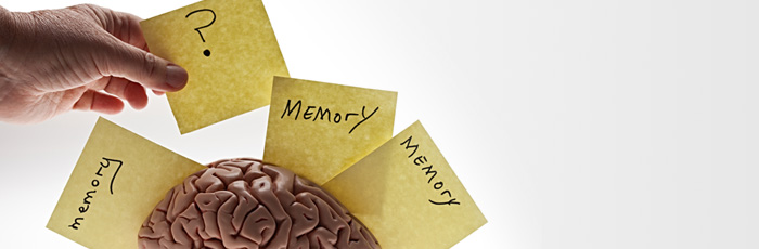 Psych: The Monash Memory Skills Group