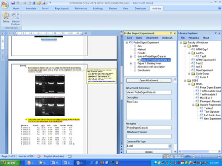 Screen capture from Microsoft Word 2007