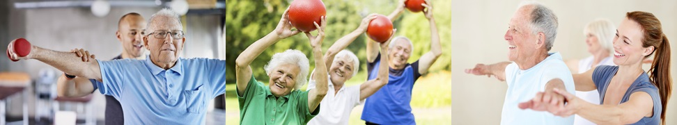 Optimising exercise programs for older people to improve balance and prevent falls